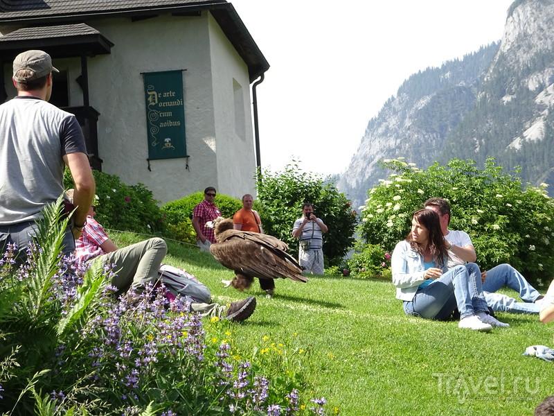 Неприступный Burghohenwerfen / Австрия