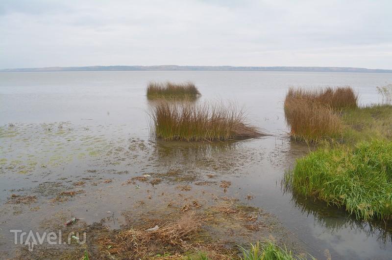 Галич: Рыбная Слобода / Россия