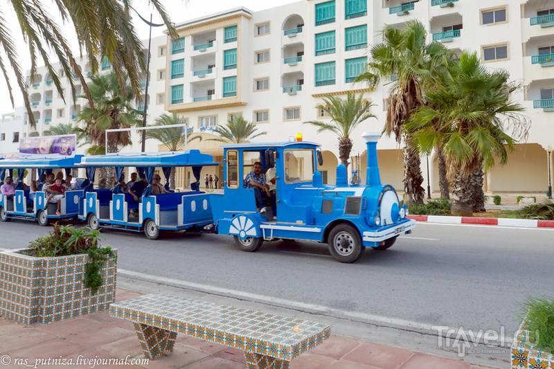 Тунисские каникулы. Ясмин Хаммамет / Фото из Туниса