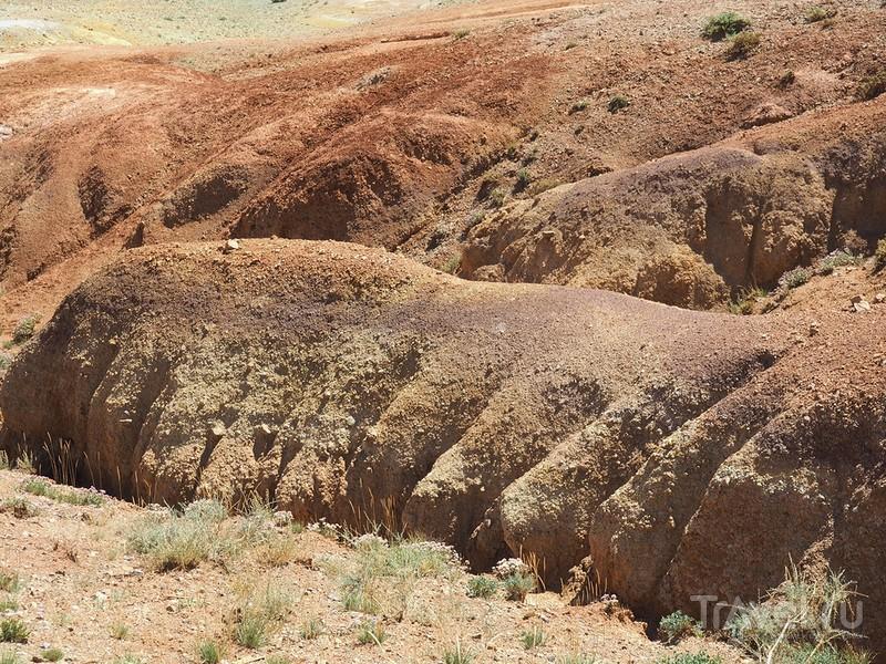 Горный Алтай. Марсианские пейзажи / Фото из России