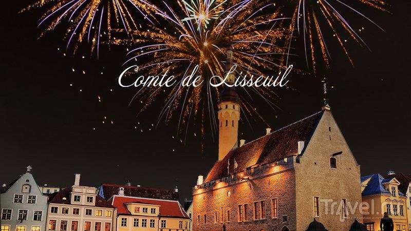 Новогоднее предложение отеля Schlössle