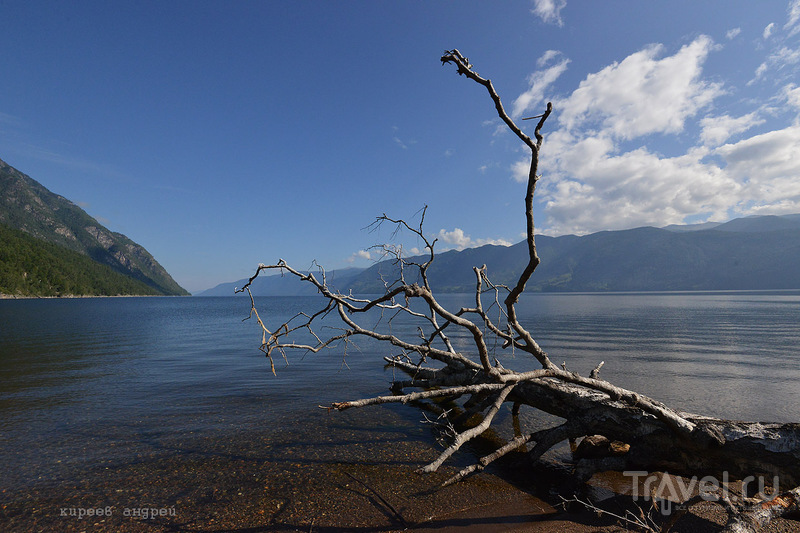 Телецкое озеро / Фото из России
