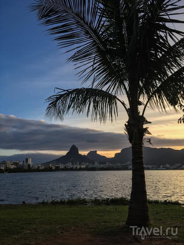 Рио де Жанейро. Вид сверху лучше / Бразилия
