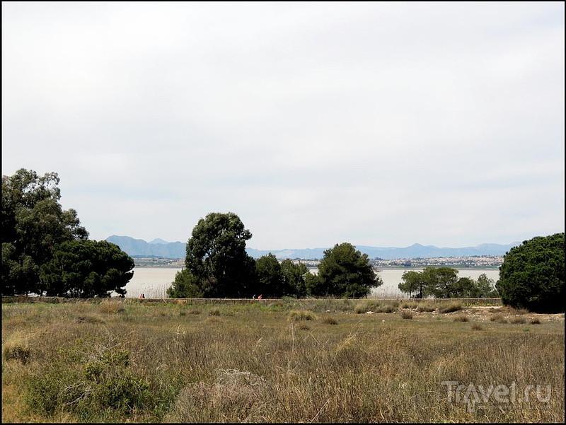 La Mata. Испания / Испания