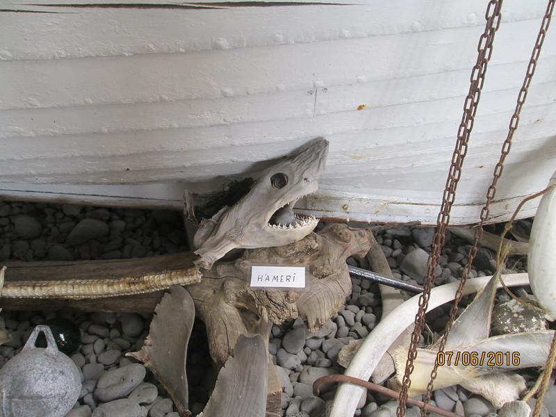 Город Stykkisholmur. Музей акул / Исландия
