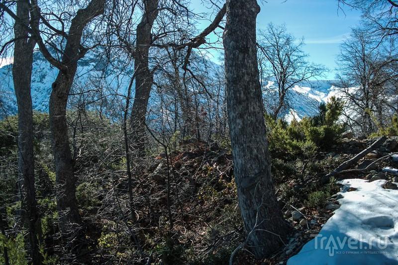Прогулка по Altos de Licray, Chile / Фото из Чили