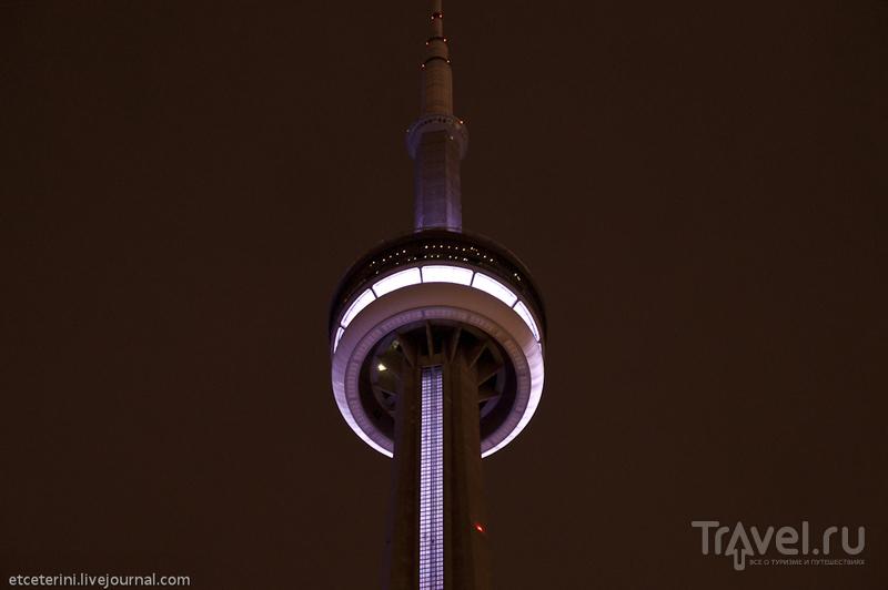 Торонто. Огни большого города / Фото из Канады