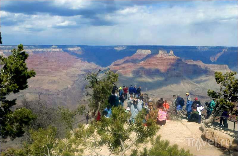 Grand Canyon мимоходом / Фото из США
