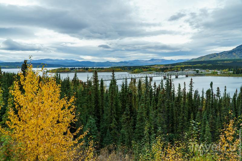 Дорога на Аляску / Фото из Канады
