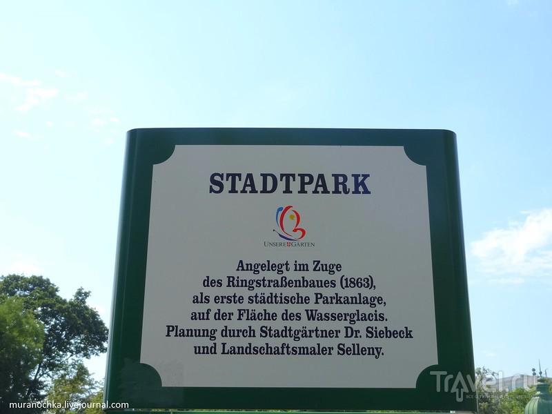 Вена. По дороге в Бельведер... / Фото из Австрии