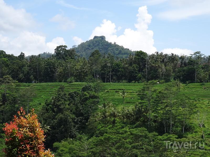 Индонезийские  природные  красоты / Фото из Индонезии