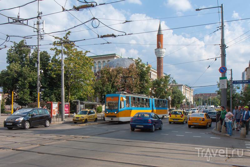 Болгария / Фото из Болгарии