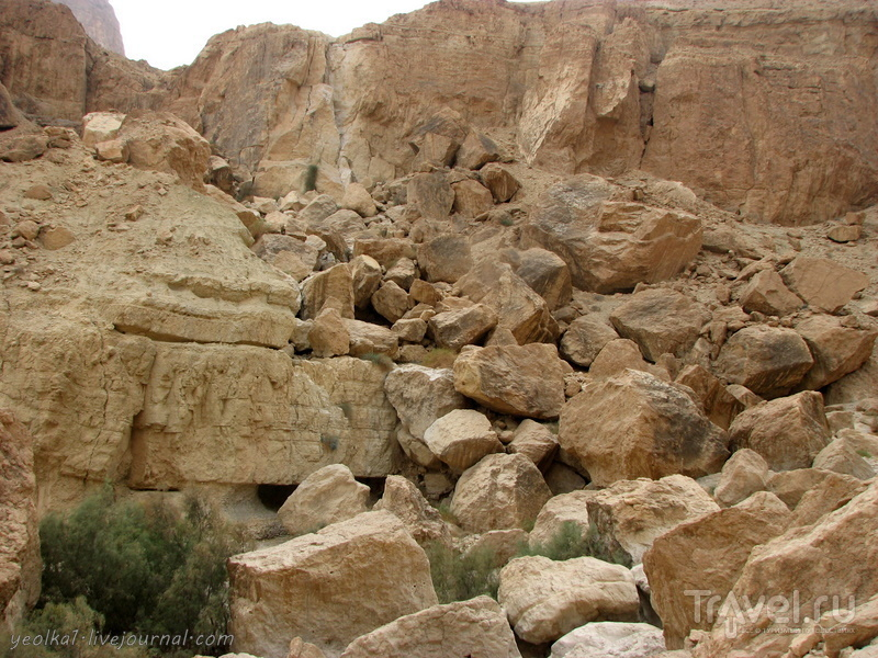 Ущелье Цеелим. Эйн Намер - Брихат Цфира / Фото из Израиля