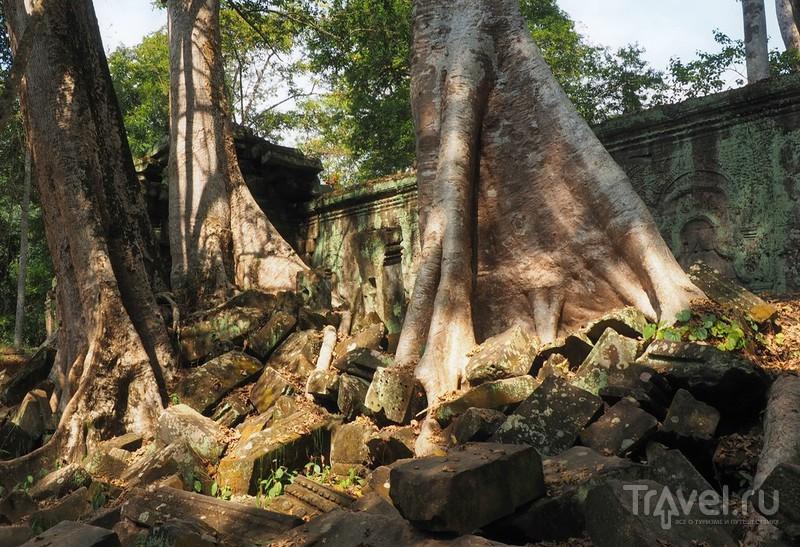 Камбоджа, Ангкор Том / Фото из Камбоджи