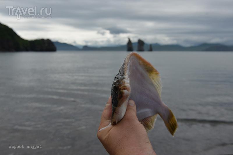 Рыбалка на Камчатке / Фото из России