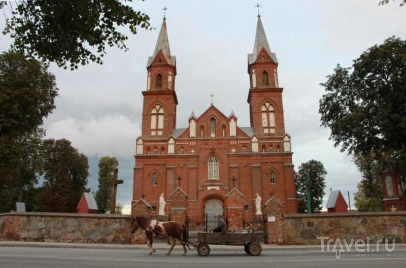 День единства балтов и ночь, когда литовцы превращаются в язычников!