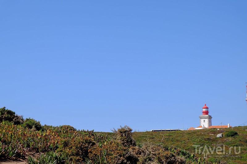 Мыс Рока / Фото из Португалии