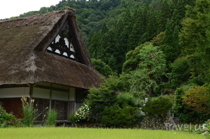 Японская деревня Айнокура. Долина пряничных домиков / Фото из Японии