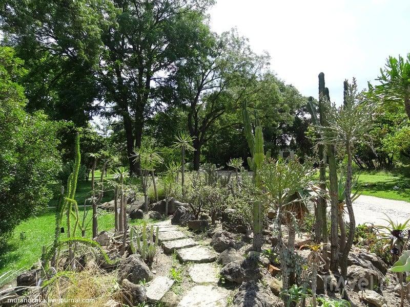 Ботанический сад Университета / Австрия