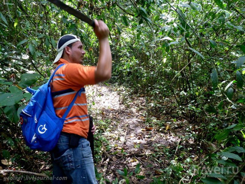 Финка Ишобель - лучшее место в Гватемале! / Фото из Гватемалы