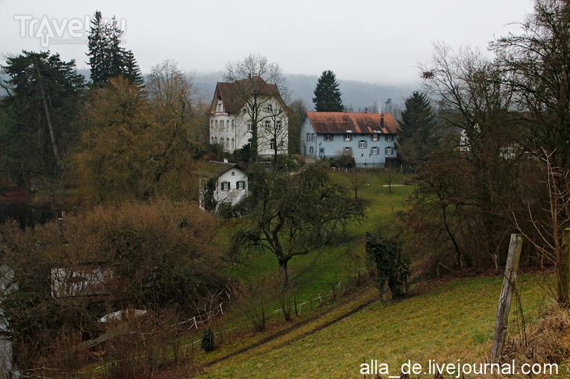 Заповедник Katzenseen / Швейцария