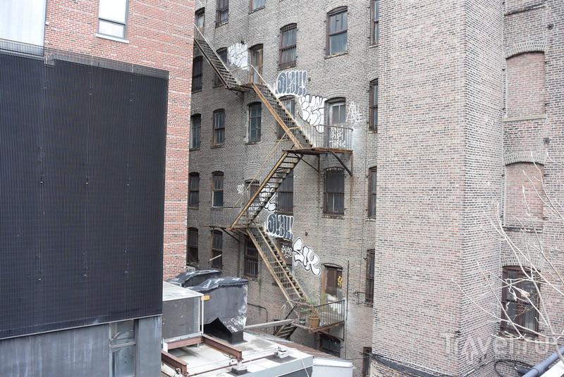 Оазис над Нью-Йорком / США