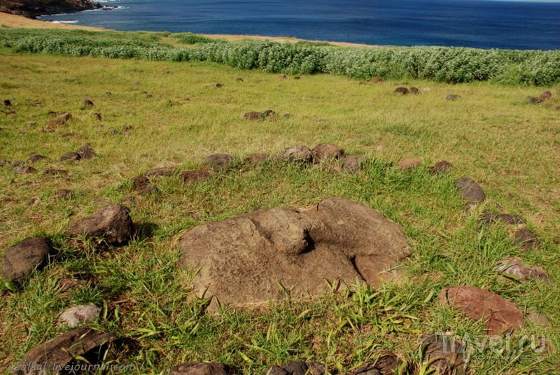 Остров Пасхи. По юго-восточному берегу от Винапу до Тонгарики / Фото из Чили