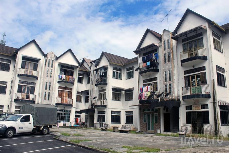 Малайзия: Нагорье Камерон / Малайзия