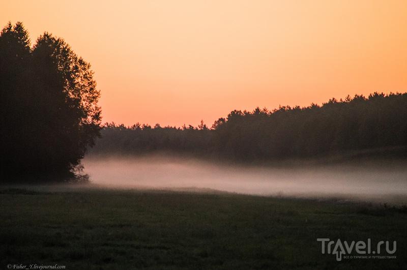 Поездка в Налибокскую Пущу. Гон Оленей / Фото из Белоруссии