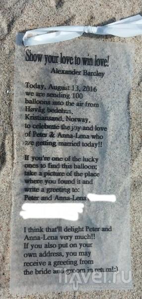 За медовый месяц свадебный шарик долетел из Норвегии в Латвию / Латвия