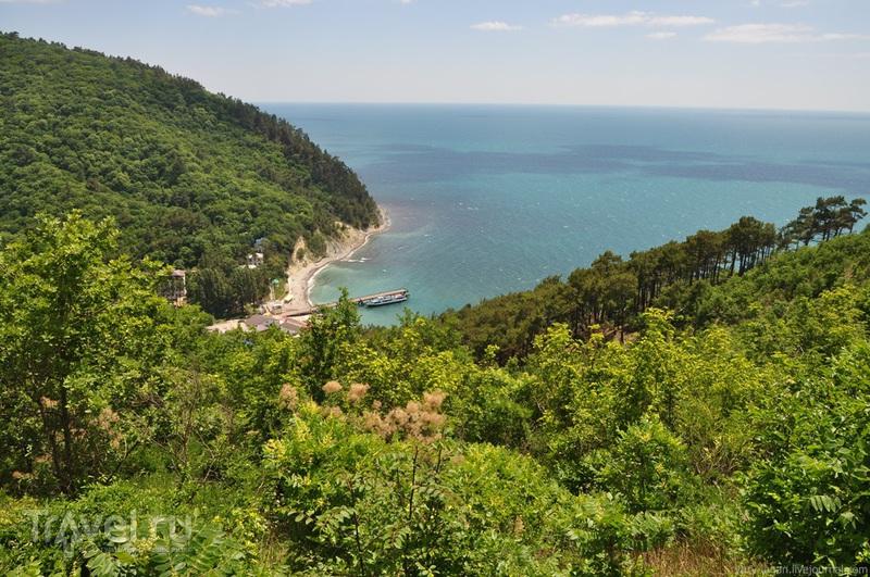 Черноморское побережье Кавказа / Фото из России