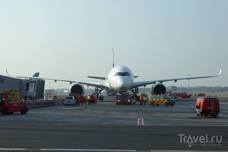 В аэропорту Гамбурга