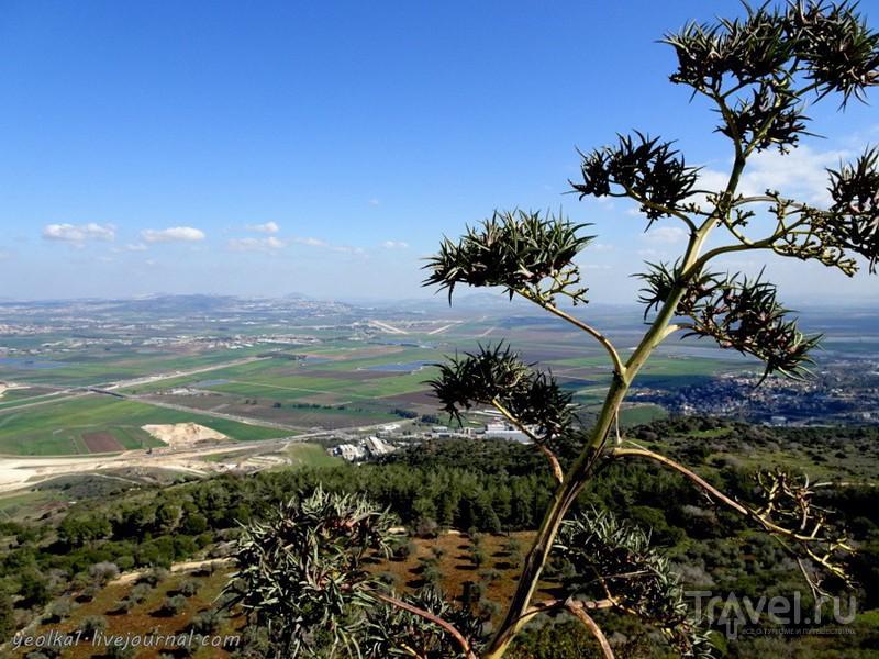 Мухраха, Хоф а-Боним, Гив'ат Хумра / Фото из Израиля