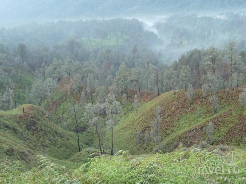 Вулкан Иджен / Индонезия