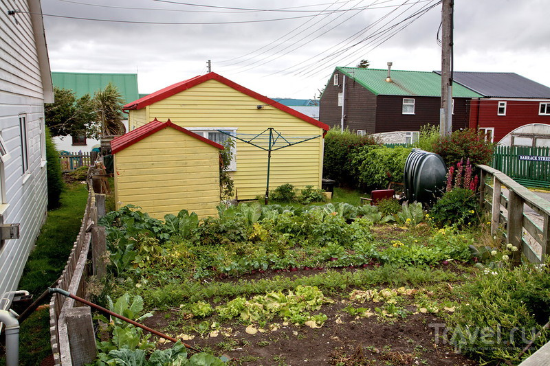Фолклендские острова, Порт-Стэнли / Фото из Великобритании