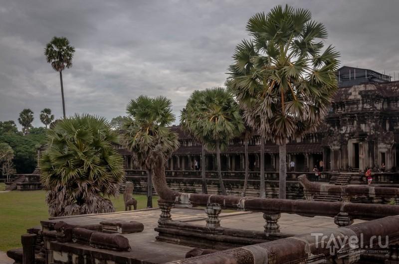 Среди храмов Ангкора / Камбоджа
