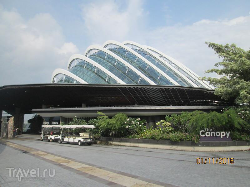 Сингапур. Сады у залива / Сингапур
