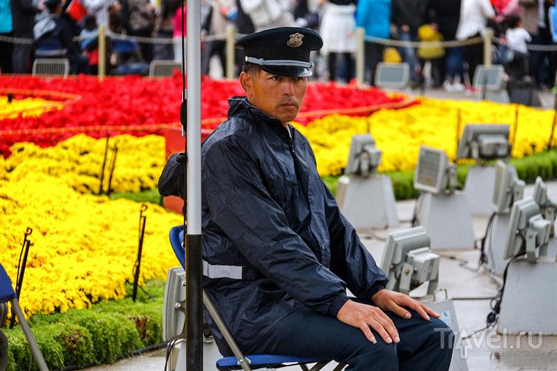 Галопом по Пекину / Китай