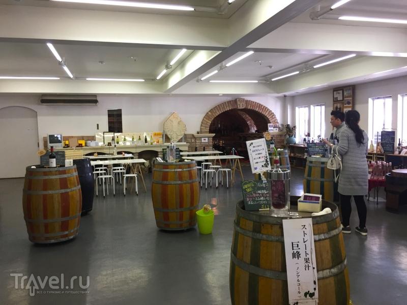 Винодельни с видом на Фудзи / Япония