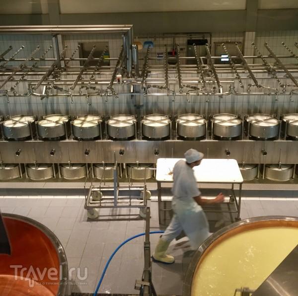 Посещение швейцарской сыроварни / Швейцария