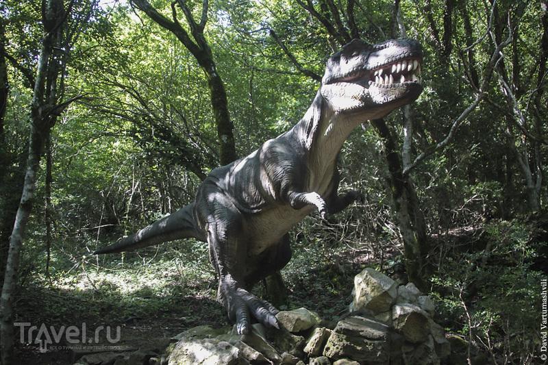 Грузия, Сатаплиа: пещера, динозавры и мёд / Фото из Грузии