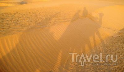 Сахара / Тунис