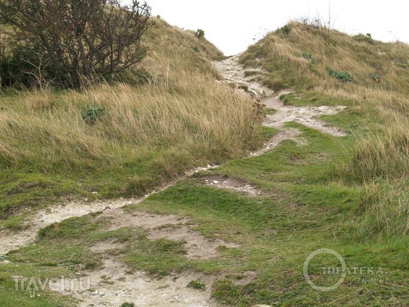 Дорожка на White Cliffs / Фото из Великобритании