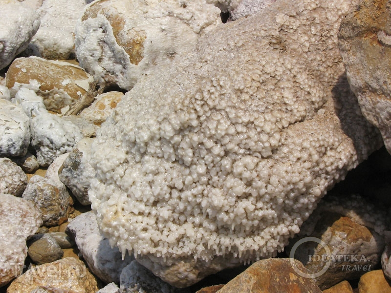 Камни на Мертвом море в Иордании / Фото из Иордании
