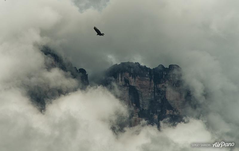 У водопада Анхель / Фото из Венесуэлы