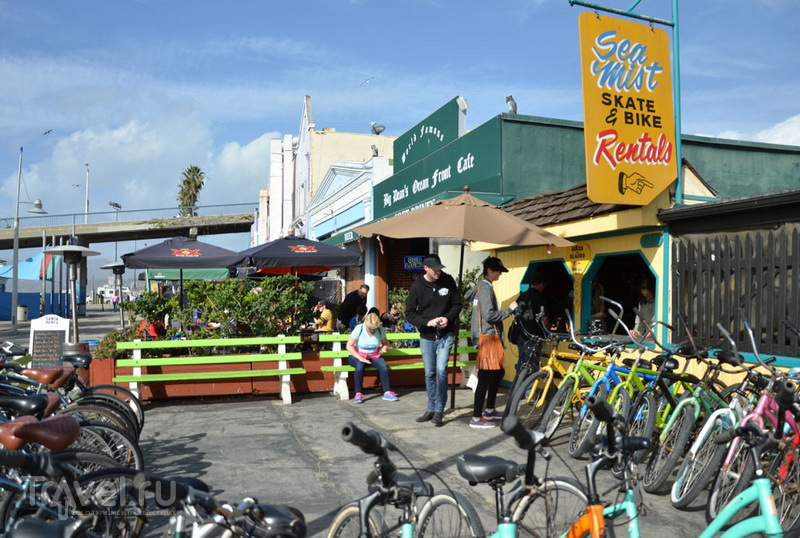 Прокат велосипедов в Санта-Монике / Фото из США