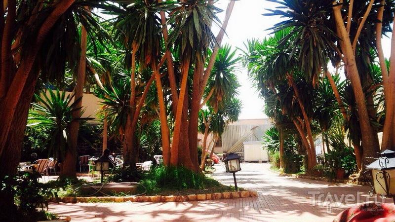 Sunshine Hotel, Asmara, Эритрея / Эритрея