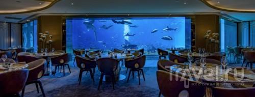 Интерьер подводного ресторана Ossiano