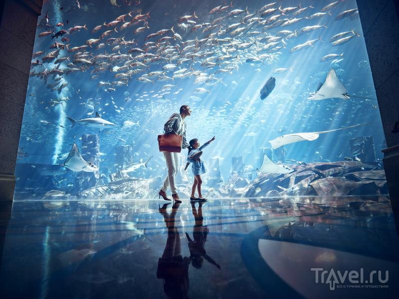 """Океанариум """"Затерянный мир"""" в Санье"""