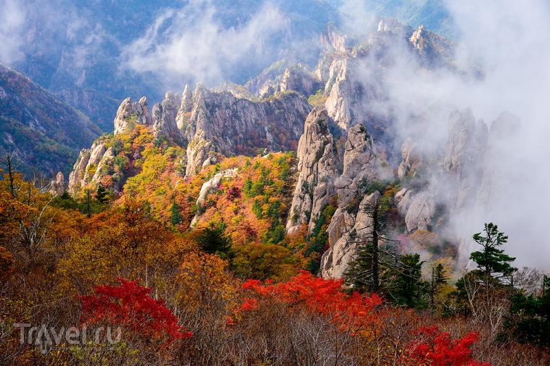 Южная Корея: четыре ярких сезона!